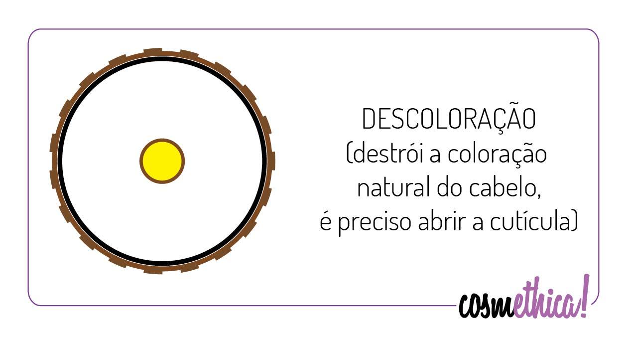 tintura_descoloracao
